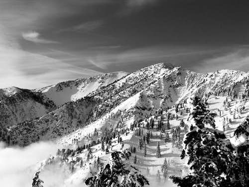 Another View of Mt Baldy from...