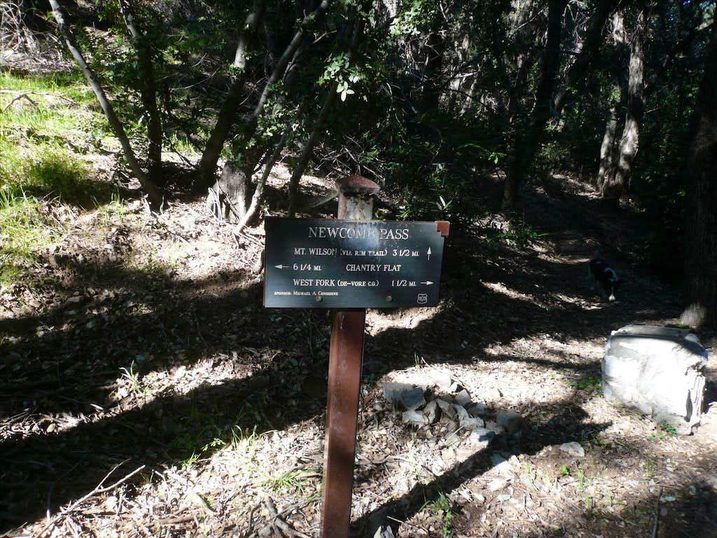 Newcomb Pass