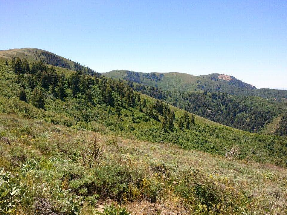 Lewis Peak 2