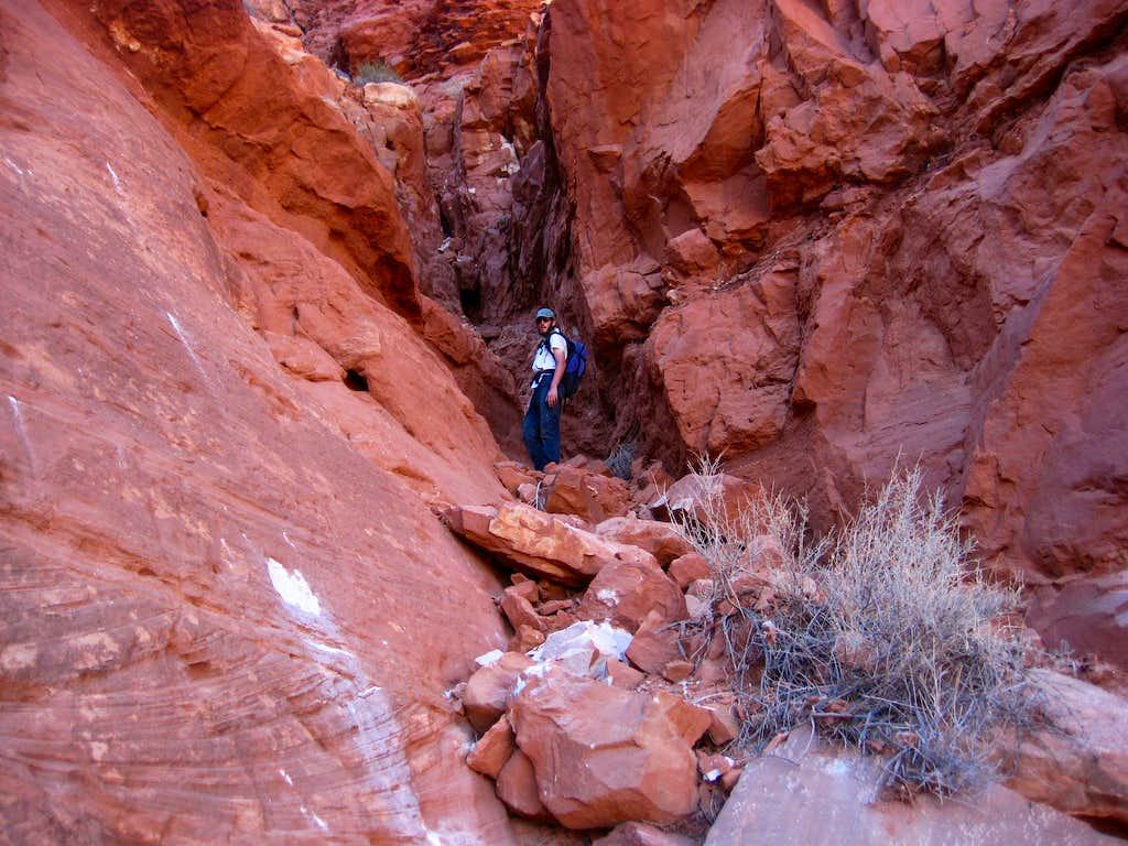 Hog Canyon