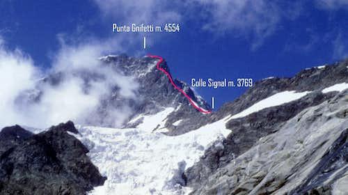 Cresta Signal topo
