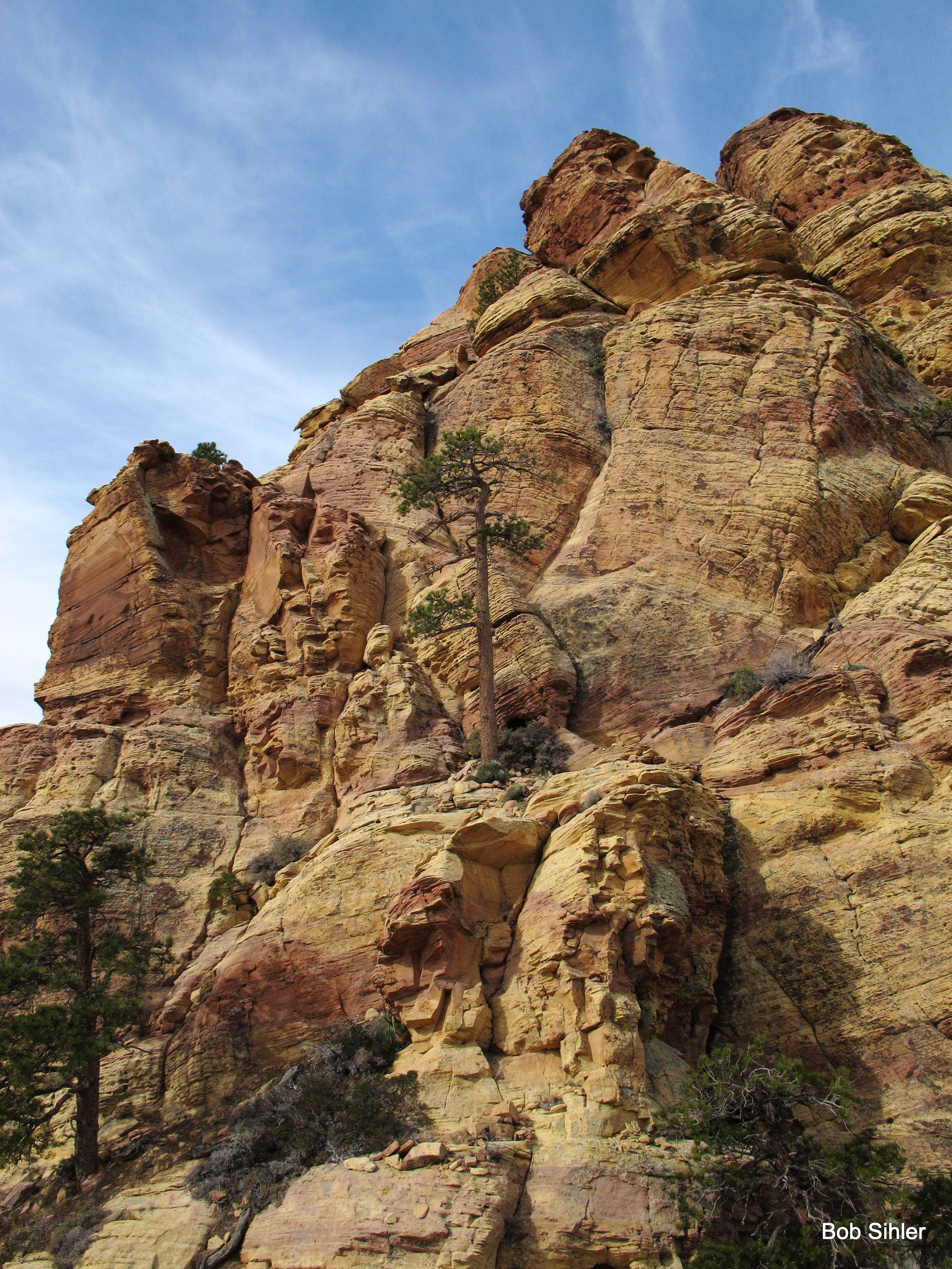 Via Oak Creek Canyon