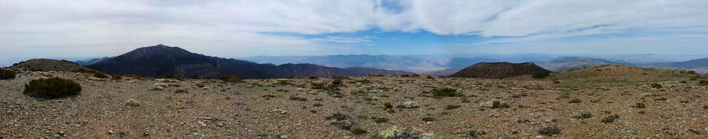 Wildrose Peak