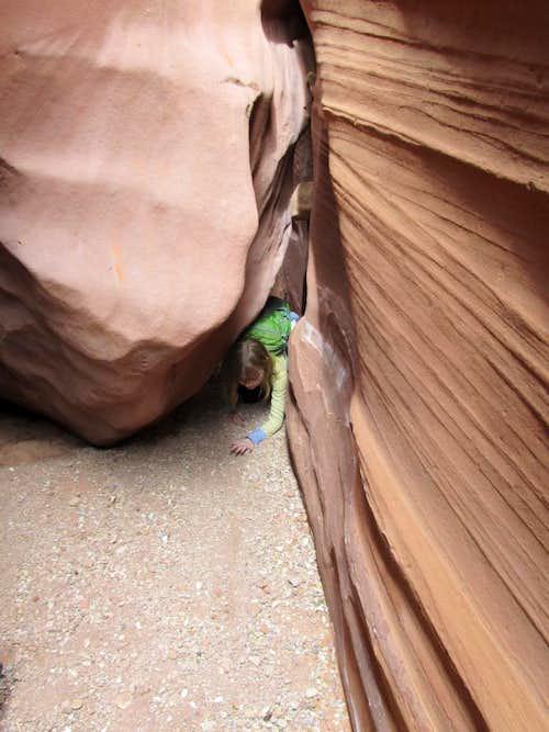 Under the boulder