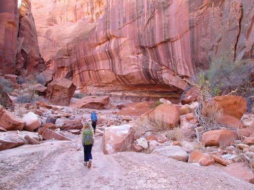 Wolverine Canyon