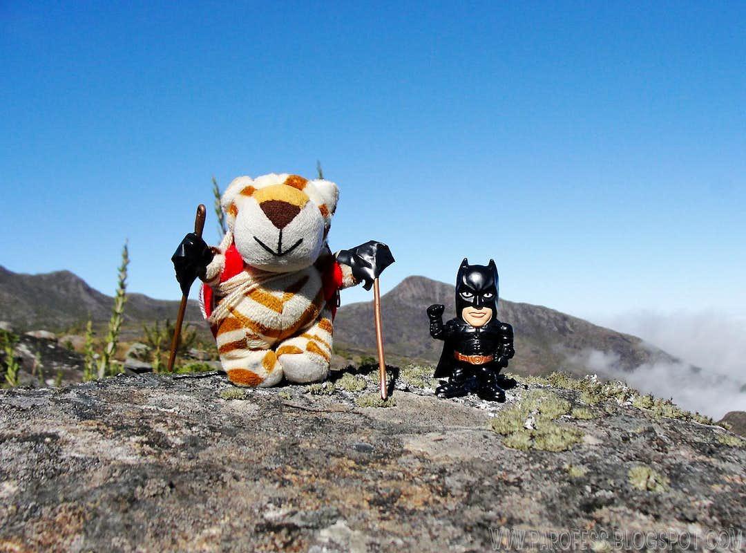 Parofito and little Bat atop...