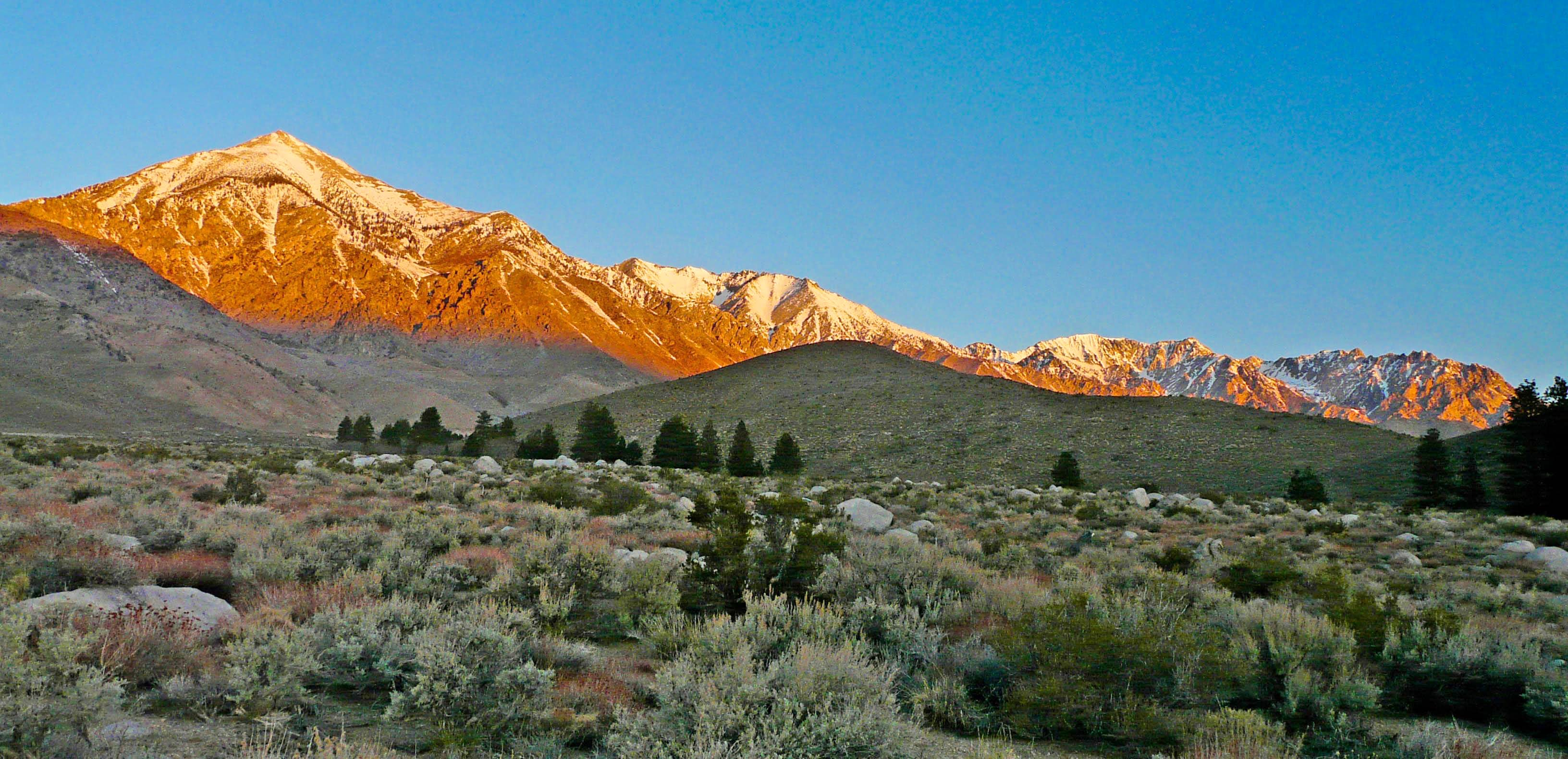 Eastern Sierra Independence Creek