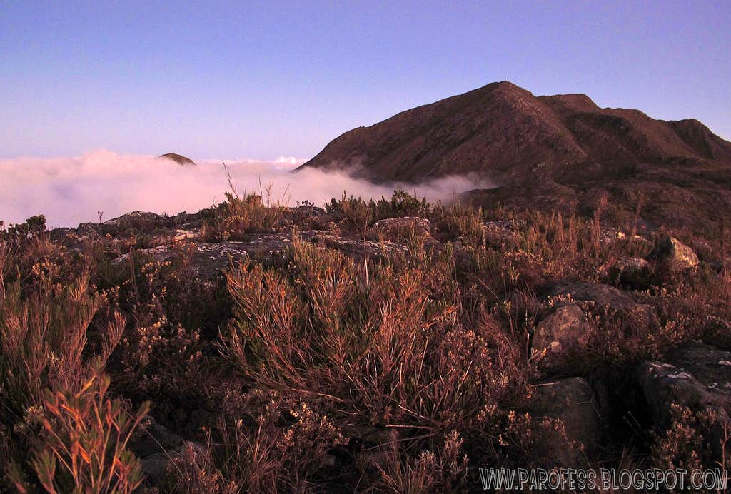 The tip of Pedra Roxa Peak