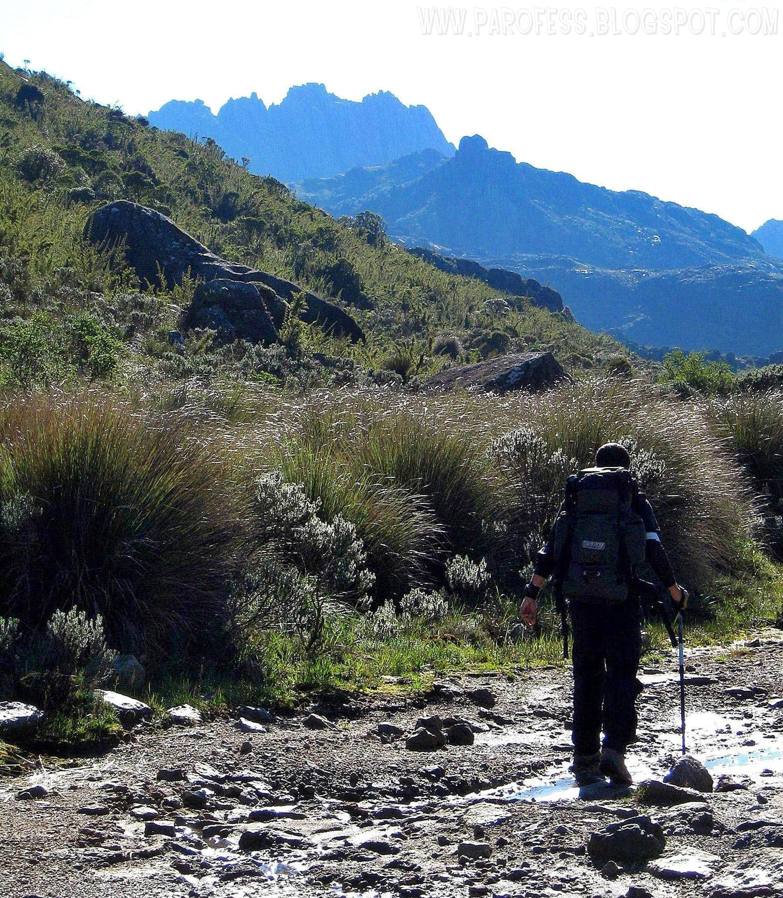 Itatiaia National Park in images