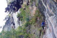 Sport climbing on Maui Thai...