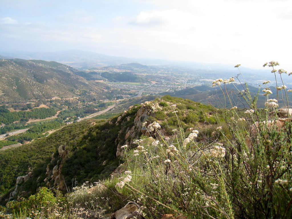 Stanley Peak summit