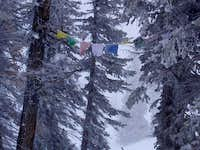 These prayer flags are near...