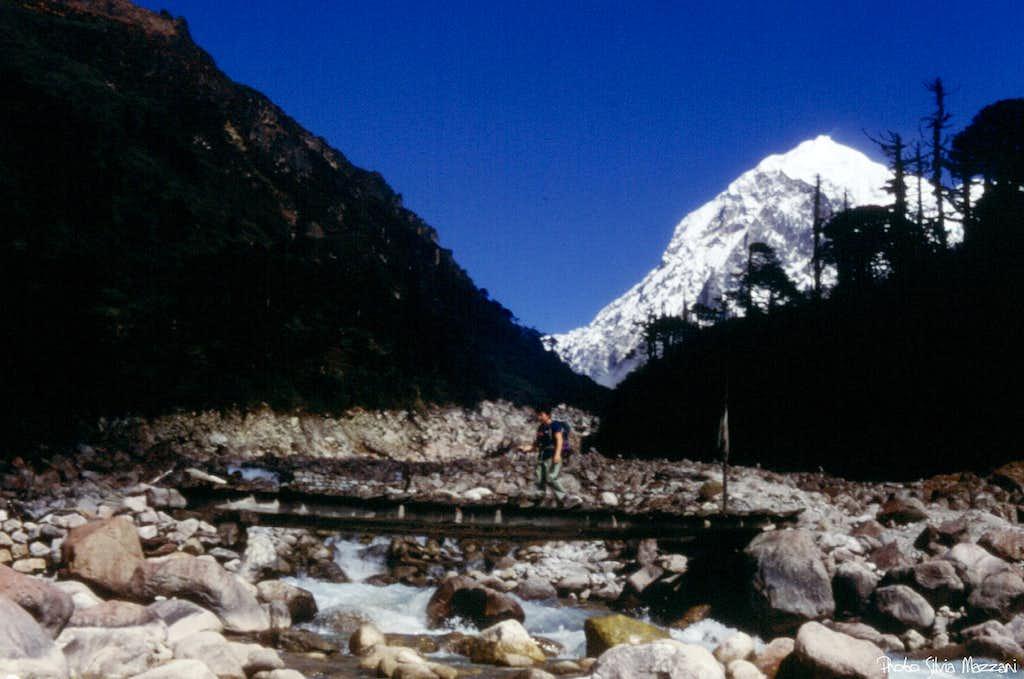 The wooden bridge between Dzongri and Thangsing