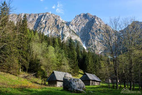 Springtime under Giewont