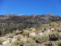 Crag Peak from PCT
