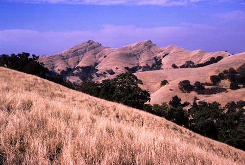 Maguire Peaks