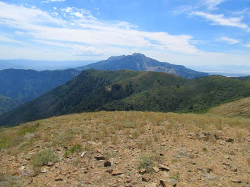 Mt. Ogden from Eyrie