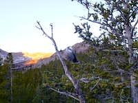 scenery on Mt. Elbert