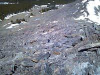 Hesse Mountain Boulder Field