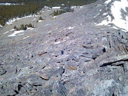Hesse Mountain Boulder Field