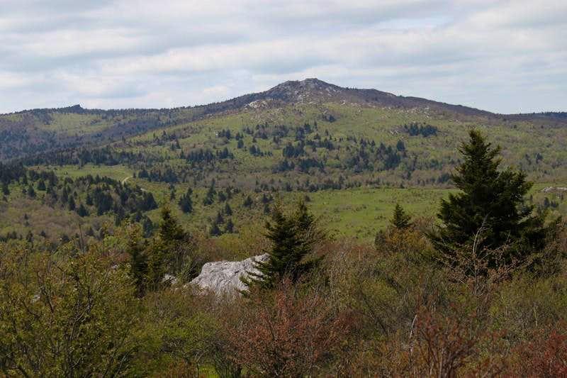 Wilburn Ridge from Little Pinnacle