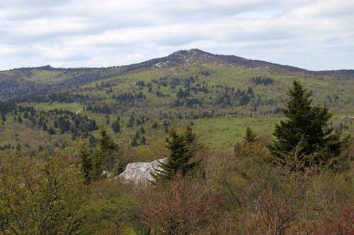 Wilburn Ridge/Pine Mountain