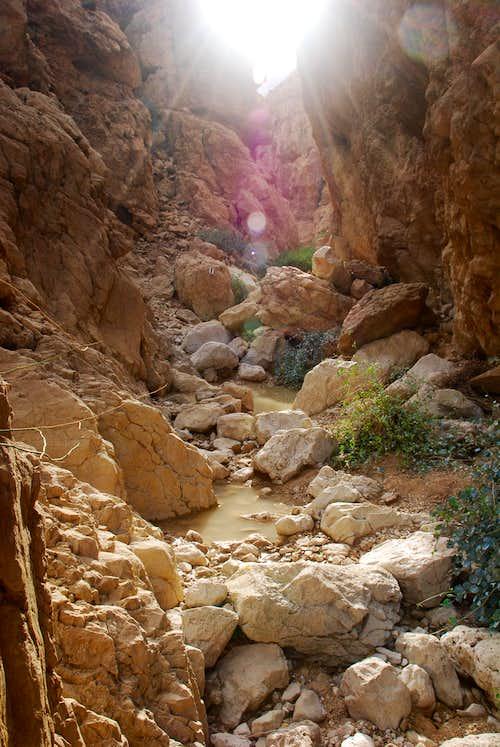 Judaean Desert Route N1