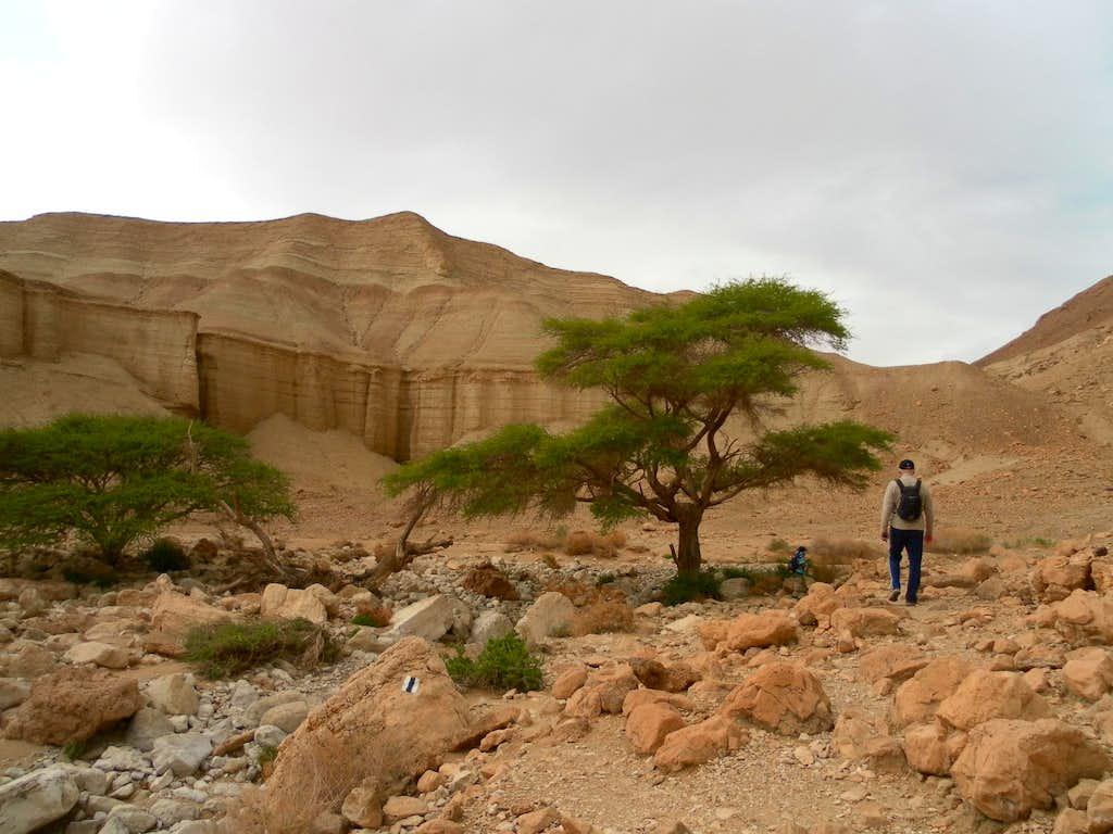Juadeaean Desert Route N1