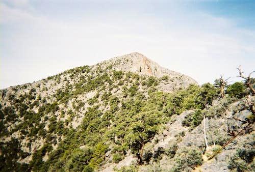 The summit of Clark Mountain...