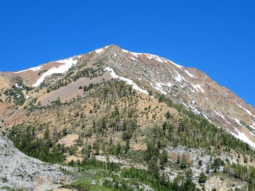 Tioga Peak east face - from Highway 120