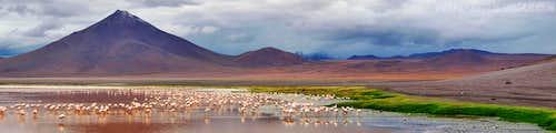 Volcano, Laguna Colorada and Flamingoes