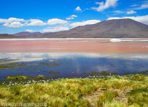 First time I saw Laguna Colorada