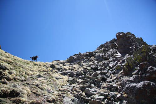 almost at the summit
