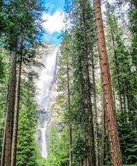 Yosemite Falls - Upper, Middle and Lower