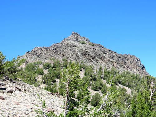 Route up South Silver Peak