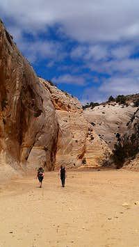 Upper Hackberry Canyon, Utah