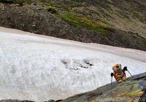 Parofito in Patagonia