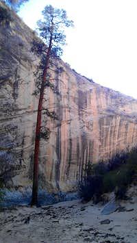 Stone Donkey Canyon
