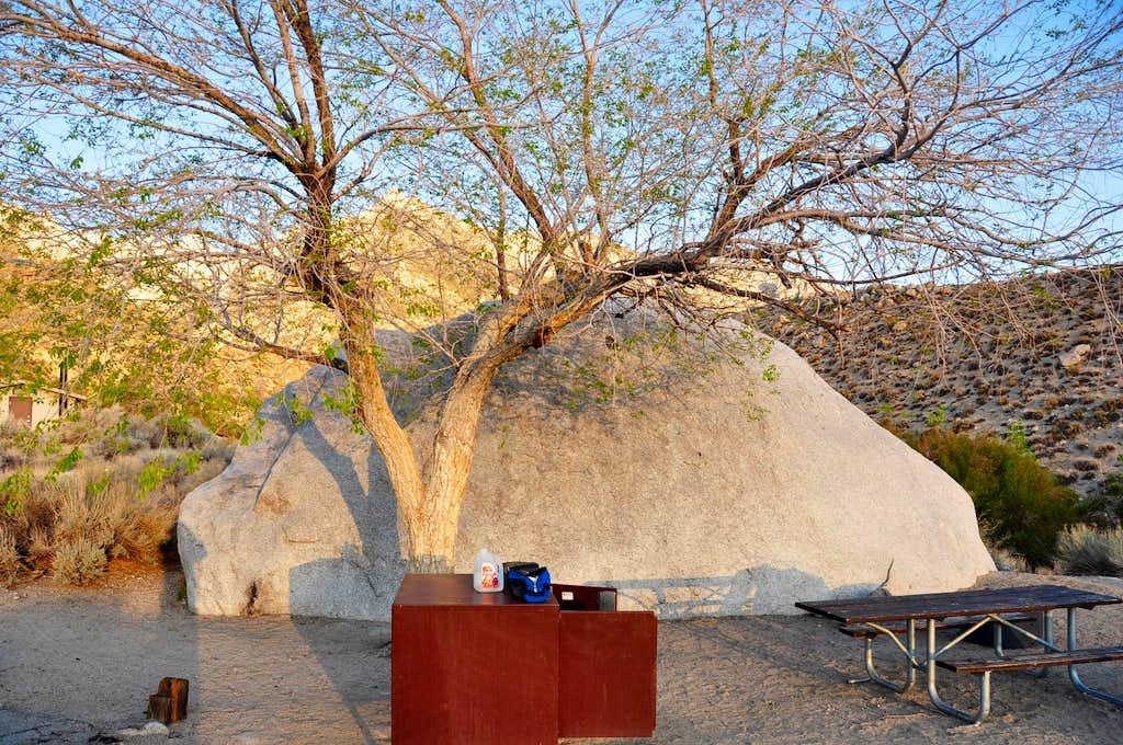Our campsite by a boulder