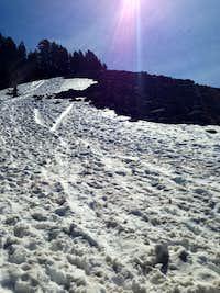 Left over snow field