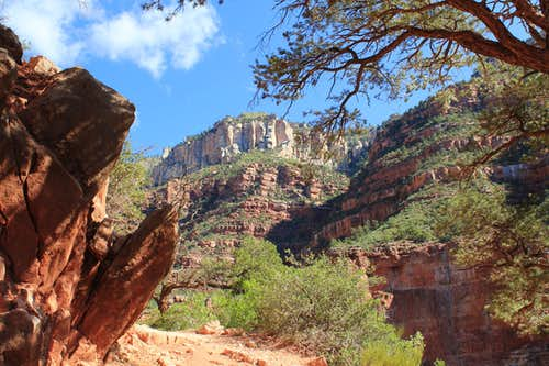 Looking up the North Kaibab Trail above Roaring Springs