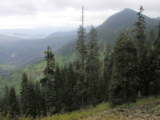 Buck Peak . Photo by Bob...