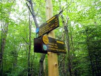 Trail Splits for Algonquin and Marcy