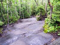 Wet Slab Section