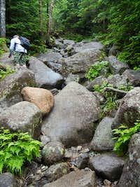 The Trail LOL pt2