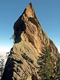 The Seal Rock from the West