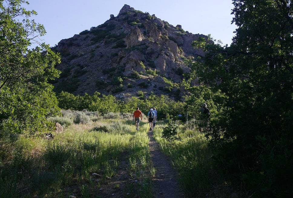 Barneys Peak
