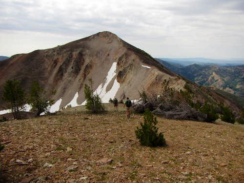 Jarbidge Mts