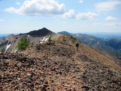 Jarbidge Mts.5