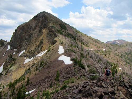 jarbidge Mts.11